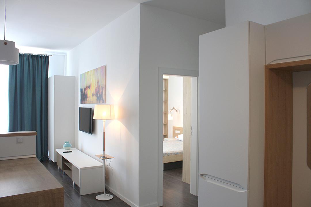 design-interior-living-amenajare-apartament-vedere-spre-intrare